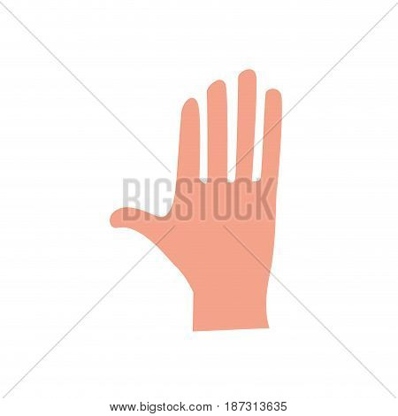 cute human hand with all fingers, vector illustration