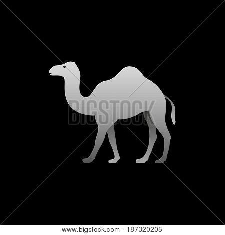 Silhouette of a gray camel standing. Camel side view profile.