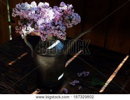 a bouquet of lilacs in silver pitcher on the table