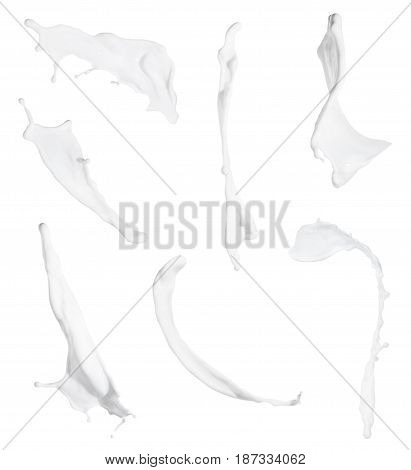milk splashes collection isolated on white background. Set of splashing milk. Milk