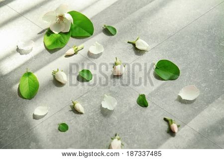 Composition with green leaves and unopened buds on table