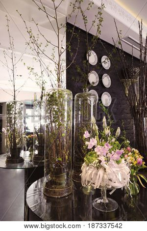 Plants on round glass table in beautiful interior of modern flower shop