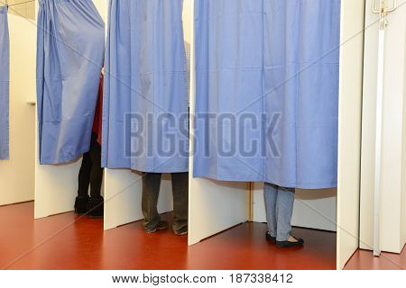 Row Of Tree Voting Booths