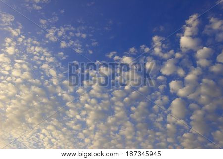 Blue sky with clouds. Cirrocumulus on sunny peaceful day.Ethereal fluffy cirrostratus , cirrocumulus and cirrus cloud formations before the sunset in early spring are contrasted against the blue.