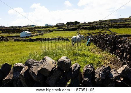 Landscape Of Inishmore