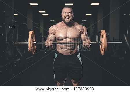 Handsome power athletic man on diet training pumping up muscles with dumbbell and barbell. Strong bodybuilder with six pack perfect abs shoulders biceps triceps and chest poster