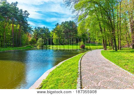 Scenic summer view of the park alley with forest and lake