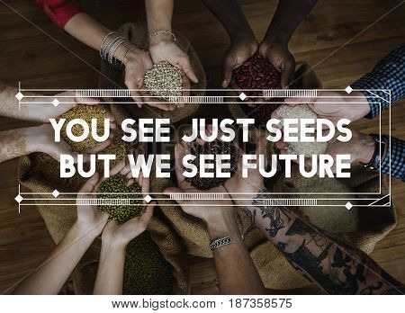 Human Hands Cupping Seed Grains Sharing Helping Feed The World Charity