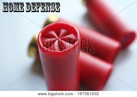 Ammo ( Home Defense ) High Quality