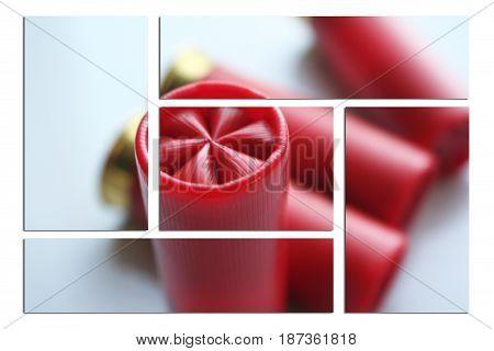 Shotgun Shells Close Up High Quality Stock Photo
