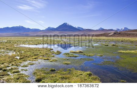 mirror surface of mountain lake laguna rossa surrounded by high peaks in atacama desert in Chile with blue sky