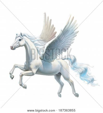 Pegasus, white horse with wings, flies, without background