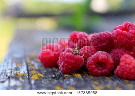 fresh raspberries on a wooden table in the garden