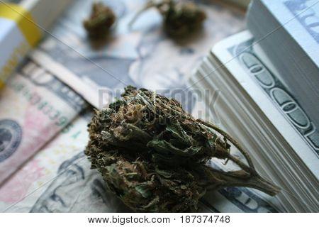Money And Marijuana Bud Close Up High Quality