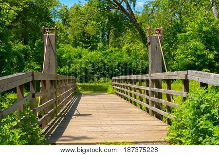 A wooden bridge leads into a green leafy wooded area