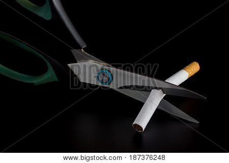 Anti Tobacco, Cigarette were scissors cut off on dark background.