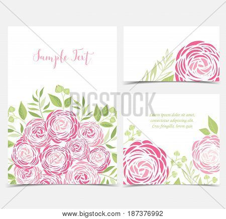 Set vector illustration of ranunculus flower. Backgrounds with pink flowers