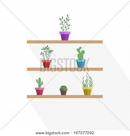 Vector illustration of potted plants and cactus, three pot decoration garden plants