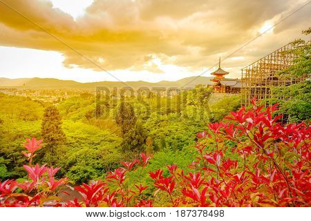 Spectacular aerial view of Kiyomizu-dera Temple with Pagoda and main hall in renovation. Sunset light in spring time. Scenic view of Kyoto city in japan. Meditation, Buddhism and Zen Concept.