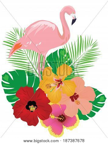 vector illustration of tropical background with flamingo and flowers