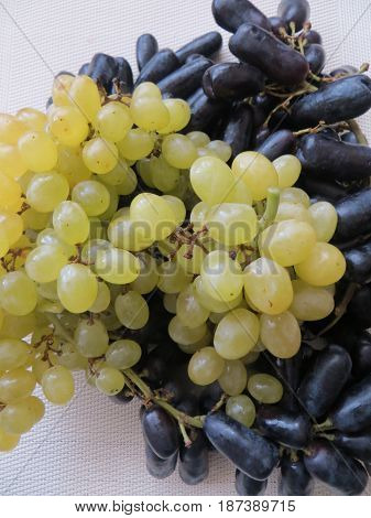 Fresh bunches of black and yellow grapes.