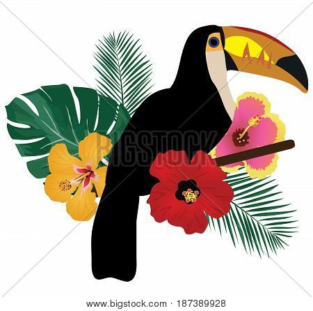 vector illustration of a toucan bird tropical flowers tropical background