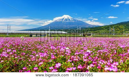 Shinkanzen With Mt. Fuji View