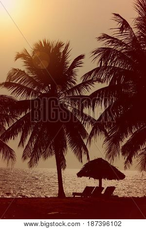 Sunset on the beach with a tiki hut and palm trees tranquil scene relaxing ocean background