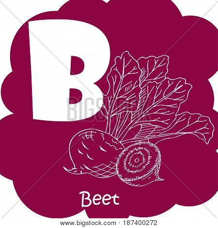 Alphabet for kids with vegetables. Healthy letter abc B-beet