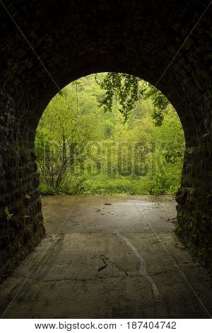 Inside a tunnel leading to the woods.