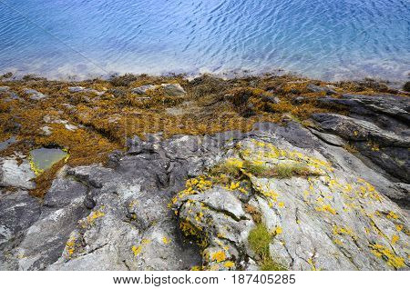 Blue nordic sea line and rock coast close up