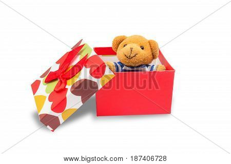 Teddy bear in gift box isolated on white background with clipping path.