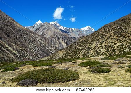 Beautiful Himalayan landscape. Green valley and majestic mountains on the background of blue sky.