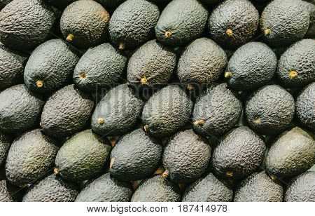 Background isolated group green avocado in market; fresh healthy vegetarian fruit top view; tropical ingredient food for guacamole food