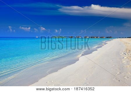 Palm Tree On Tropical Island With Turquoise Clear Water And Overwater Bungalow.