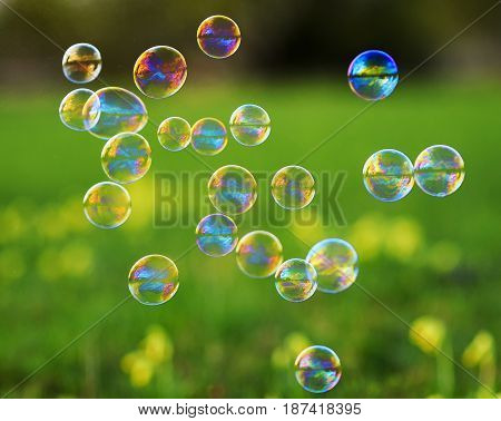 bright festive background with flying shiny soap bubbles on green meadow