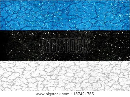 Estonia Grunge Style National Flag