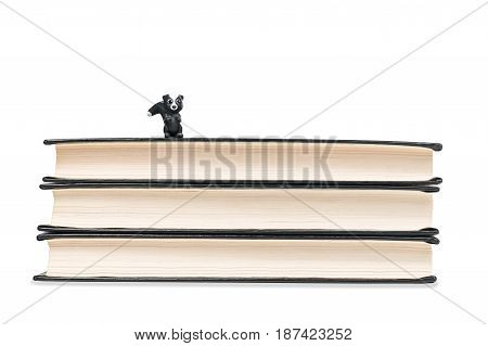 Little badger toy sitting on a stack of books isolated on a white background