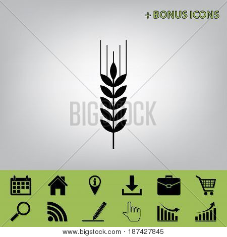 Wheat sign illustration. Spike. Spica. Vector. Black icon at gray background with bonus icons at celery ones