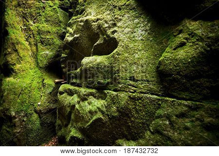 Fantastic view of the green canyon Siberia. Stone walls covered with moss.Teplice-Adrspach Rock Town. Czech Republic. Artistic picture. Beauty world.