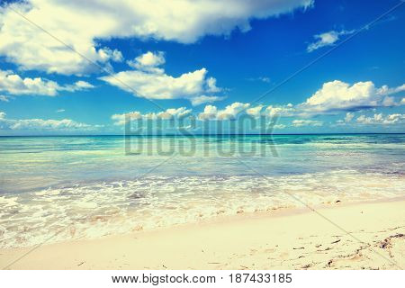 Caribbean sea. Tropical exotic water landscape. Topical paradise. Ocean nature. Saona Island. Domincan Republic