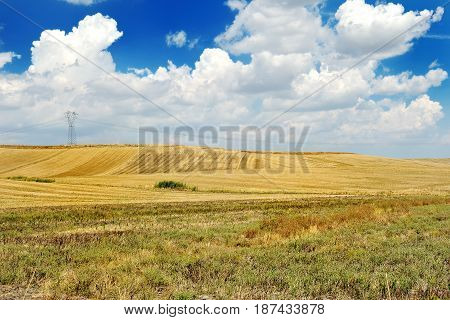 Landscape with field blue sky and white clouds