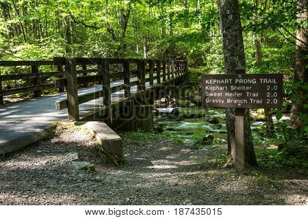 Hiking Trail In The Great Smoky Mountains. Hiking trail sign with a bridge crossing in the Great Smoky Mountains National Park in Gatlinburg, Tennessee.