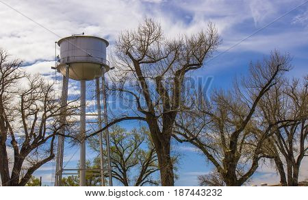 Old Water Tower Framed Amidst Oak Trees In Springtime