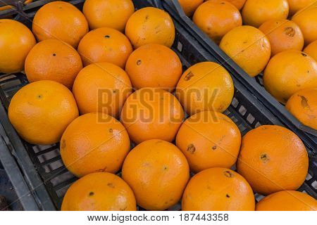 Bunch of fresh mandarin oranges or Tangerines in the black basket in south Italy market.