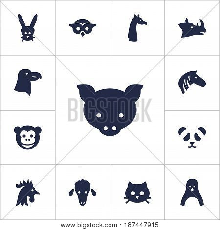 Set Of 13 Beast Icons Set.Collection Of Pussy, Rhinoceros, Aquila And Other Elements.