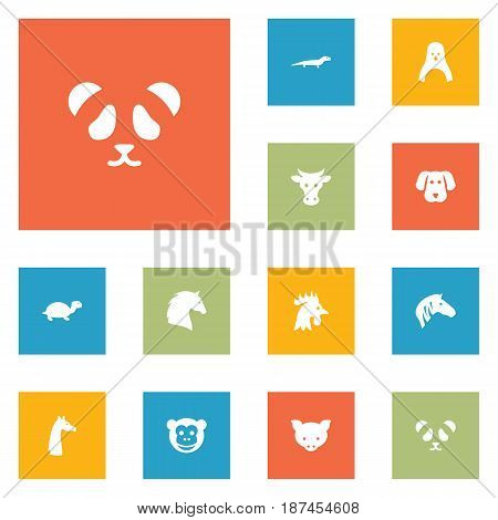 Set Of 12 Brute Icons Set.Collection Of Camelopard, Ape, Tortoise And Other Elements.