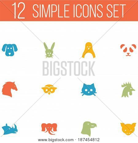 Set Of 12 Brute Icons Set.Collection Of Night Fowl, Bear, Trunked Animal And Other Elements.