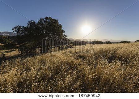 Morning view at Santa Susana State Historic Park in the San Fernando Valley area of Los Angeles, California.