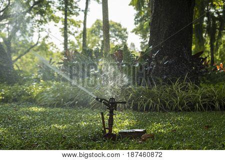 springer spray water in public park in day time